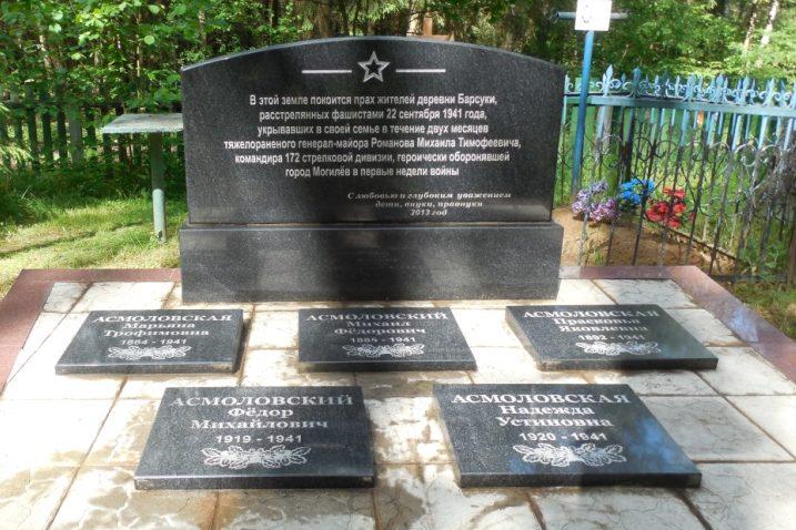 д. Барсуки Могилевского р-на. Братская могила на сельском кладбище, в которой захоронено 5 воинов.