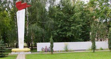 д. Большие Бортники Бобруйского р-на. Стела в память о земляках, погибших в годы войны.