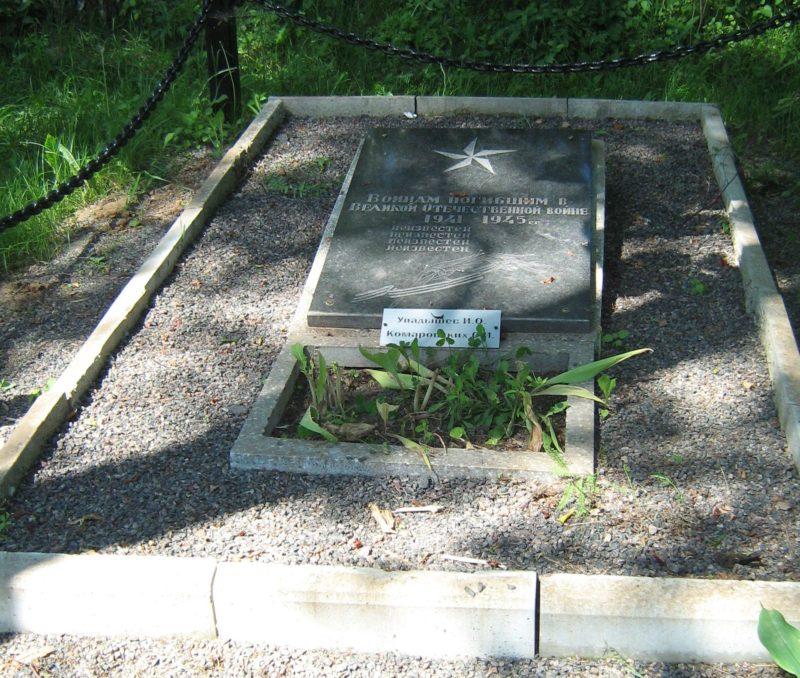 д. Алюты Дрибинского р-на. Братская могила, в которой похоронено 4 советских воина, в т.ч. 2 неизвестных, погибших в годы войны.