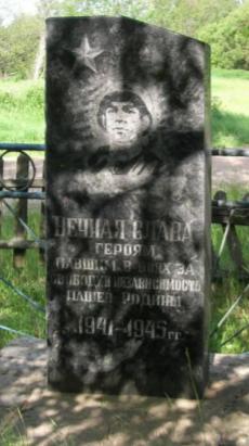 д. Рагодзинка Чаусского р-на. Братская могила на сельском кладбище.
