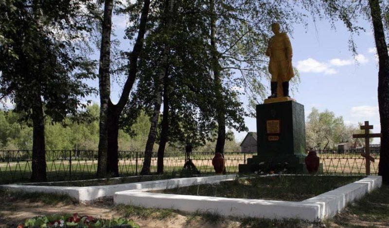 д. Обидовичи Бобруйского р-на. Памятник, установленный на братской могиле советских воинов.