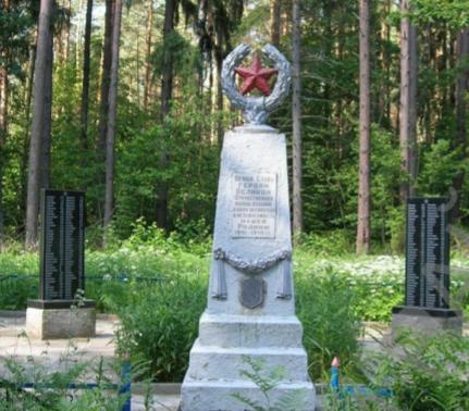 д. Скварск Чауского р-на. Братская могила, в которой захоронено 787 воинов.