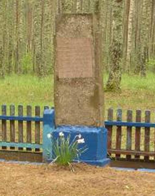 д. Победа Краснопольского р-на. Памятник, установленный на братской могиле, в которой похоронено 11 советских воинов, погибших в годы войны.