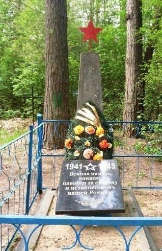 д. Верховцы Кричевского р-на. Памятник, установлен на братской могиле, в которой похоронено 12 неизвестных советских воинов.