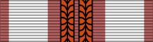 Планка при награждении третьим крестом.