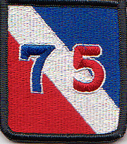 75-я пехотная дивизия. Созданная в 1945 году.