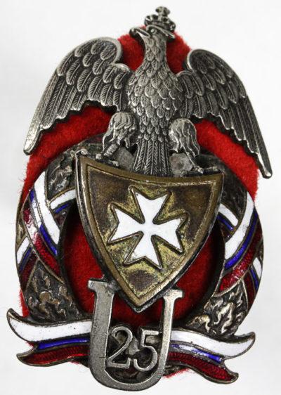 Аверс и реверс полкового знака 25-го Великопольского уланского полка.