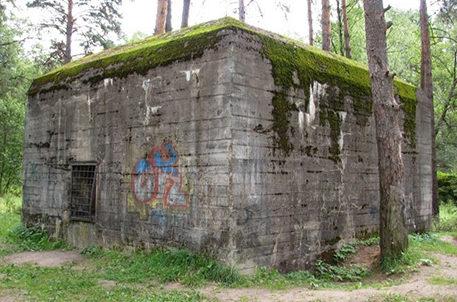 Дизель-генераторная в лесу, называемая «Западный» или бункер Гитлера.