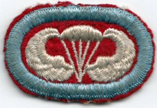 501-я парашютно-десантная дивизия.