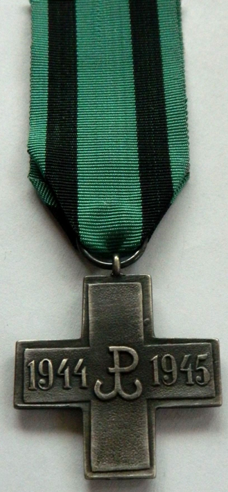 Реверс памятного знака «Крест Акции «Буря».