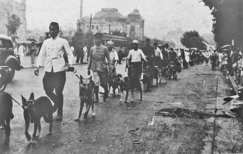 Парад служебных собак. Июль 1941 г.