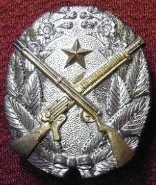 Знак 1-й степени «За отличную стрельбу с винтовки и легкого пулемета».