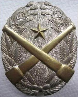 Аверс и реверс «Знака за стрельбу из скорострельного орудия» 1-й степени из тяжелого металла.