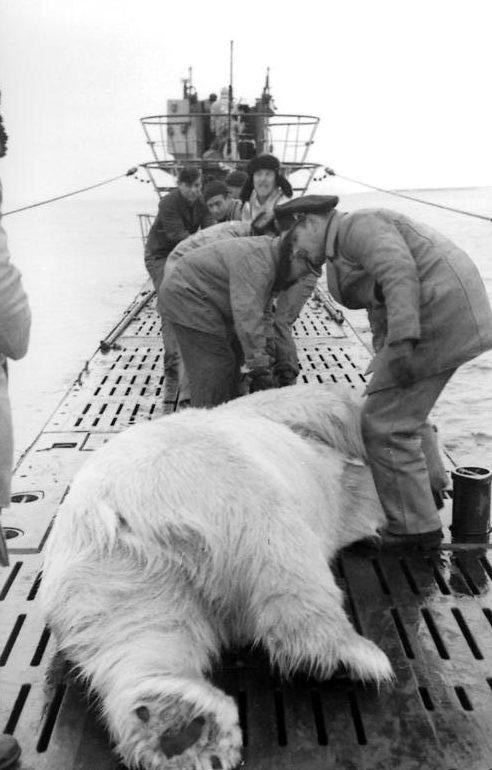 Охота в Северном море. Сентябрь 1943 г.