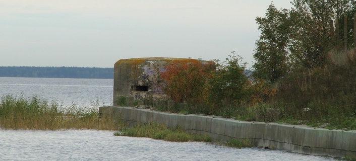 ДОТ №12, Кронштадский УР. г. Санкт-Петербург, Форт 1-й Северный.