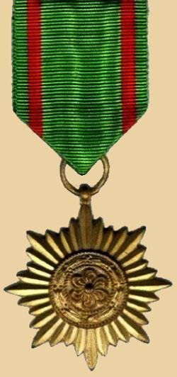 Орден «За заслуги» 2-го класса в «золоте».