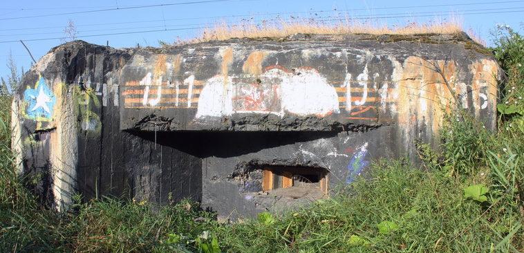 ДОТ №24, рубеж «Ижора». г. Санкт-Петербург, Белградская ул., напротив д. 26.
