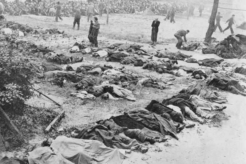 Тела заключенных тюрьмы во Львове, расстрелянных перед отступлением Красной Армии. Июль 1941 г.