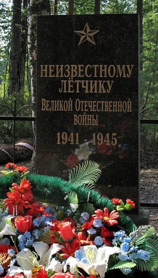 г. Зеленогорск. Памятник неизвестному летчику, установленный на территории ОПС «Красавица».
