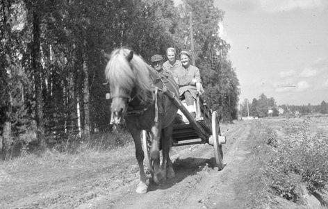 «Лотты» в прифронтовой зоне. 1941 г.