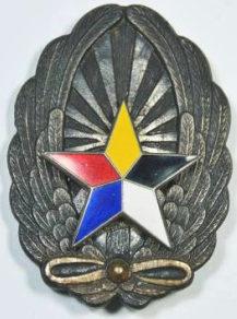 Аверс и реверс знака армейского пилота.