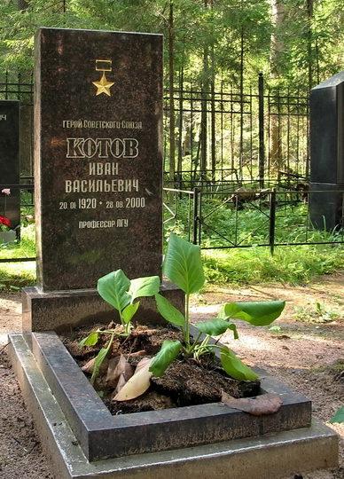 п. Комарово. Памятник на могиле Героя Советского Союза Котова И.В., установленный на поселковом кладбище.