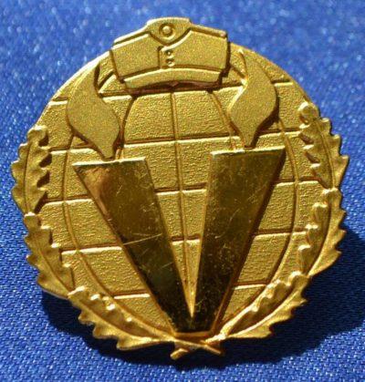 Аверс и реверс памятного знака батальона Нордост дивизии СС Викинг.