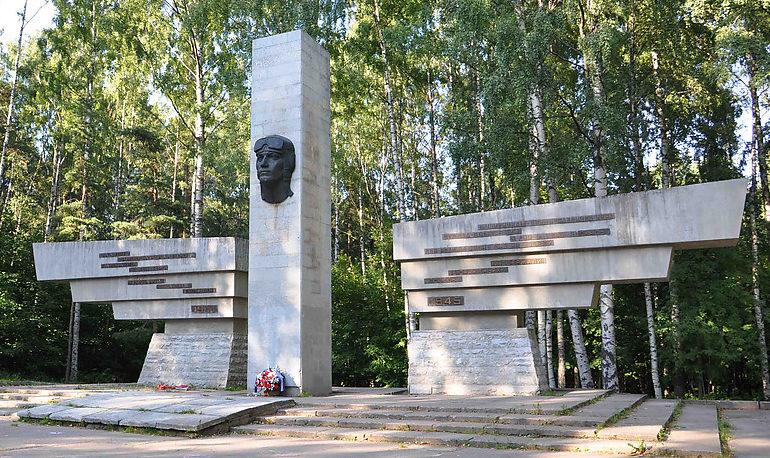 Памятник военным летчикам.