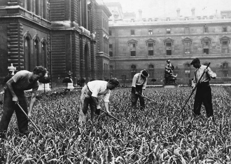 Продукты распределялись по карточкам, поэтому многие разводили огороды. 1942 г.