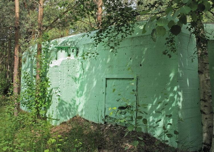 ДОТ №121, КаУР, г. Сестрорецк, Приморское шоссе, 38-й км, на территории санатория «Белые ночи».