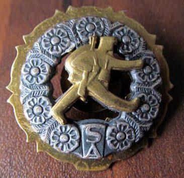 Аверс и реверс знака Шюцкора «За поход» 1-го класса.