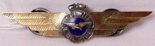Знак пилота ВВС 1-го класса.