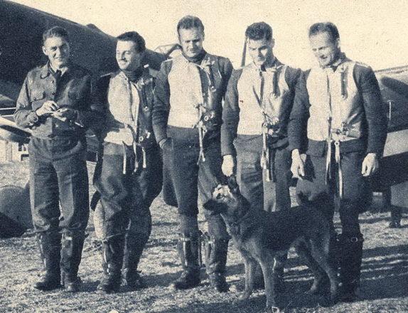 Собаки в Люфтваффе.