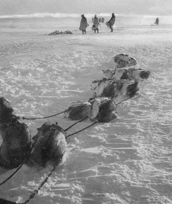Горные егеря 6-й немецкой дивизии во время привала на Кольском полуострове. 1942 г.