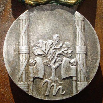 Аверс и реверс памятной медали заслуг многодетных матерей.