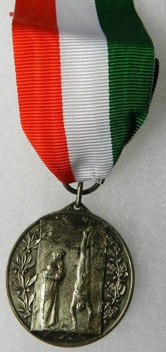 Аверс и реверс памятной медали партизан Валенцы.