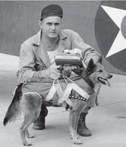 Трикси - талисман 16-й наблюдательной эскадрильи. Собака летала, поэтому оснащена собственным парашютом, который был перестроен с факельного парашюта сержантом Джоном Патриком.