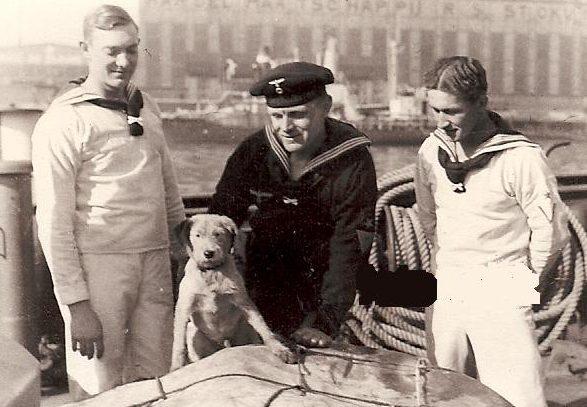 Собаки на флоте.