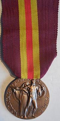 Аверс и реверс медали «За заслуги волонтеров в Испанской кампании».