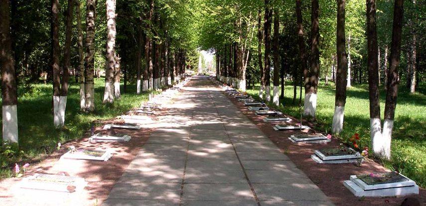 Аллеи Славы на мемориале.