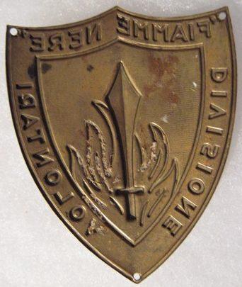 Нарукавные щиты волонтерских дивизий.