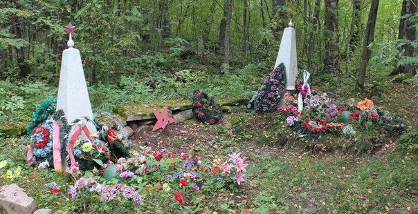д. Загубье Волховского р-на. Братская могила советских воинов на кладбище.