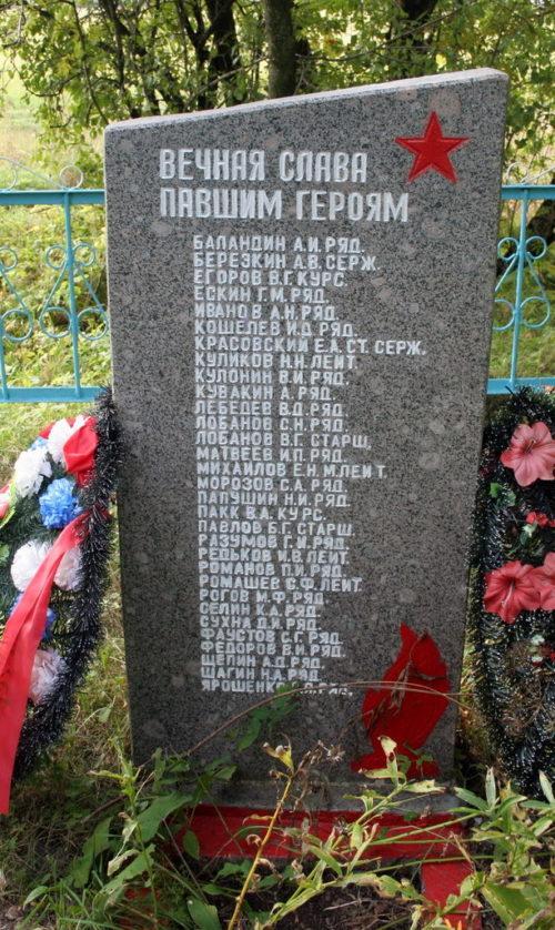 д. Войносолово Кингисеппского р-на. Памятник, установленный на братской могиле, в которой захоронено 35 советских воинов, в т.ч. 3 неизвестных.