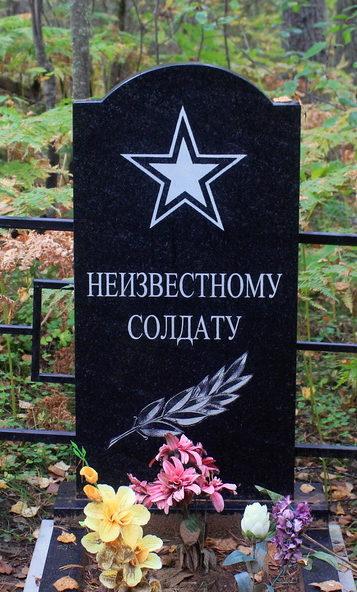 д. Ефремково Лодейнопольского р-на. Памятник неизвестному солдату на кладбище.