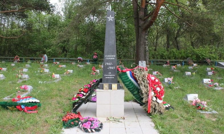 д. Пономарево Лодейнопольского р-на. Памятник, установленный на братской могиле, в которой захоронено 473 советских воина, в т.ч. 46 неизвестных.