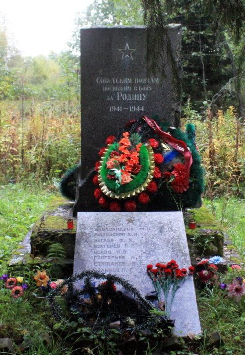 д. Шапша Лодейнопольского р-на. Памятник, установленный на братской могиле, в которой захоронено 22 советских воина.