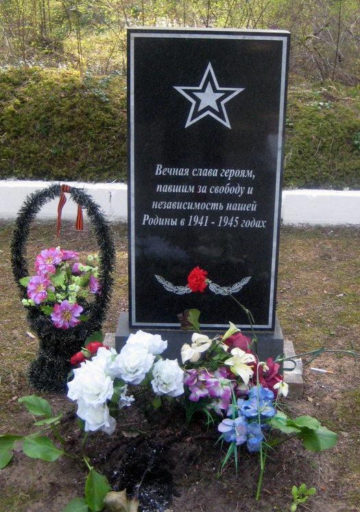 д. Саркюля Кингисеппского р-на. Братская могила, советских воинов, погибших в годы войны.