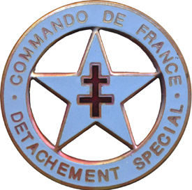 Аверс и реверс знака подразделения специального назначения сухопутных войск.