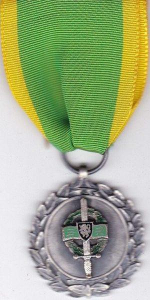 Памятная медаль Королевской Федерацией военных за границей.