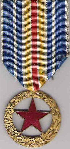 Неофициальные варианты медали для военнослужащих.